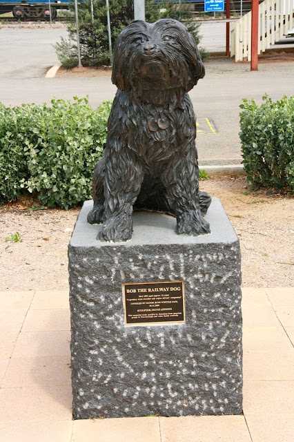 Statue of Bob the Railway Dog in Peterborough, South Australia.